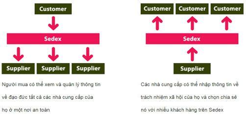 Áp dụng tiêu chuẩn SEDEX - SMETA
